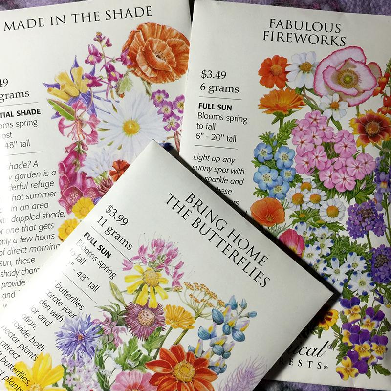 seeds-wildflowers-garden-flowers